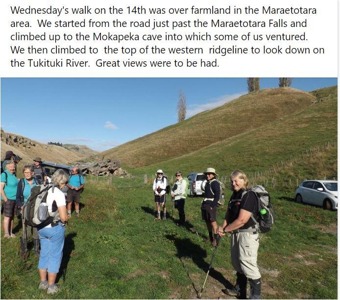 Trip Reports - Maraetotara Farm walk